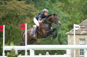 Stallion Company's Leprince Des Bois sporthorse stallion