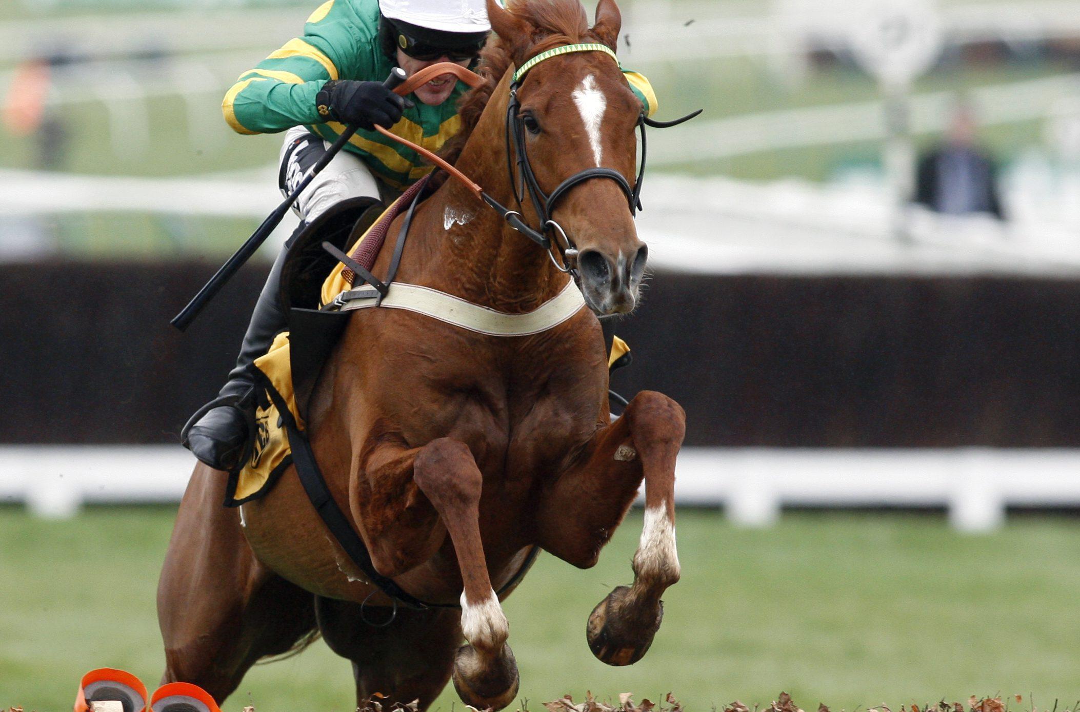 Horse Racing Jump