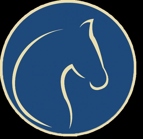 Stud Icon website