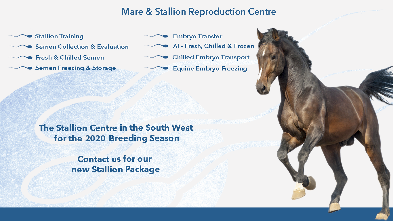 Tomlinson Equine - For All your Equine Reproduction